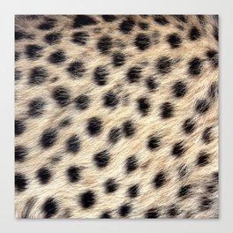 Cheetah Pattern Style Canvas Print