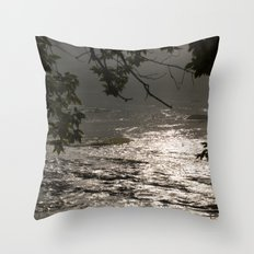 In A Misty Rain Throw Pillow