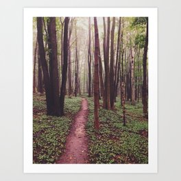 The Future Awaits, The Path Lies Before You Art Print