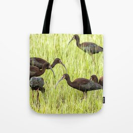 Six White-Faced Ibis in Breeding Plumage Tote Bag