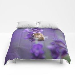Lavender Bee Comforters