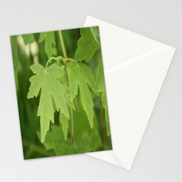 Amber Orientalis Leaves Stationery Cards