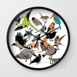 color birds Wall Clock