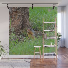Columbian ground squirrel in Jasper National Park Wall Mural