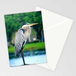 Great Blue Heron On Deck Stationery Cards