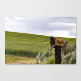 Still Waiting For That Love Letter Canvas Print