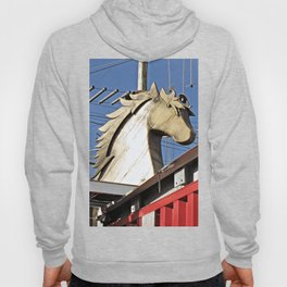 Horse of Another Color Hoody