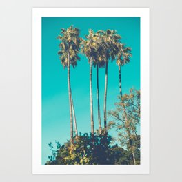 A Few Turquoise Palms Art Print