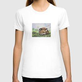 Fox Sleepeng T-shirt