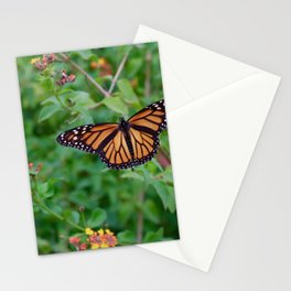 October Monarch Stationery Cards