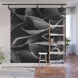 Flower   Flowers   Black Hostas   Goth Plant   Nature Art Wall Mural
