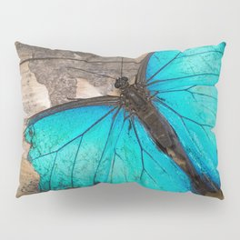 Weathered wings Pillow Sham