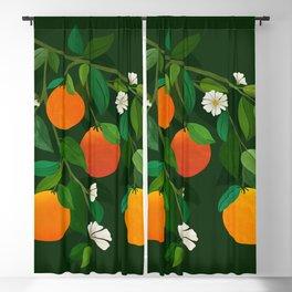 Oranges and Blossoms / Botanical Illustration Blackout Curtain