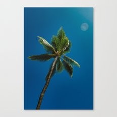 palm tree ver.summer Canvas Print
