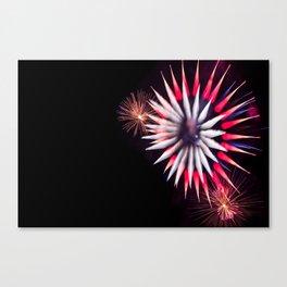 Spiky Fireworks  Canvas Print