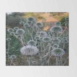 Seed Head Of Leek Flower Allium Sphaerocephalon  Throw Blanket