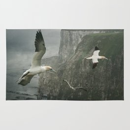 Gannets at Bempton Cliffs Rug