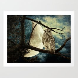 Barred Owl Bird Night Moon Blue Tans Country Art A137 Art Print