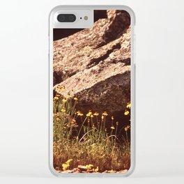 Central Texas - Near Lake Travis Clear iPhone Case