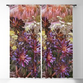 Coral Desert Garden Blackout Curtain