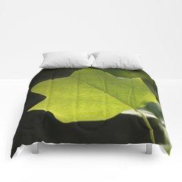 Lovely Leaf Comforters