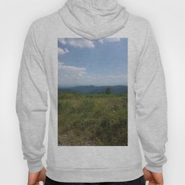 Meadow and mountains in the distance Hoody