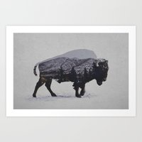 bison Art Prints featuring The American Bison by Davies Babies
