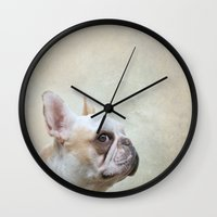 french bulldog Wall Clocks featuring French bulldog  by Pauline Fowler ( Polly470 )