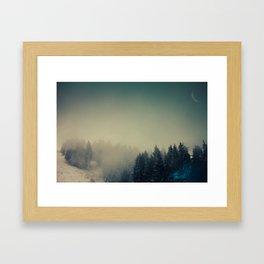 Snow in the woods Framed Art Print