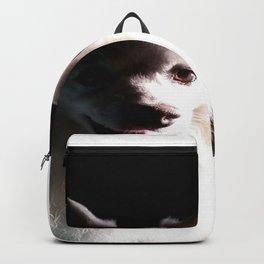 Kamir...my best friend! Backpack