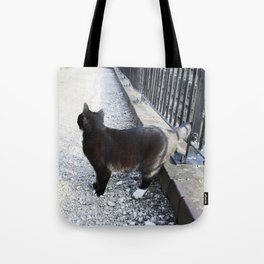 Railway Cat Observing Tote Bag
