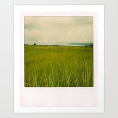 Adjumani Field Art Print