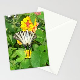 Scarce Swallowtail Feeding on Lantana Stationery Cards