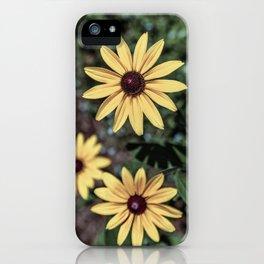 Three Gloriosa daisies iPhone Case
