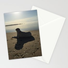 Dog Days Stationery Cards