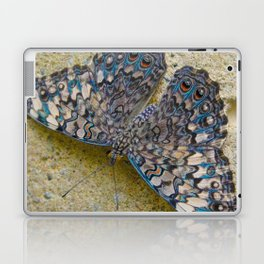 Turquoise and Sand Butterfly by Teresa Thompson Laptop & iPad Skin
