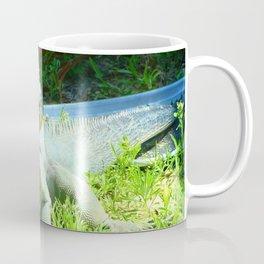 Iguana and Chill Coffee Mug