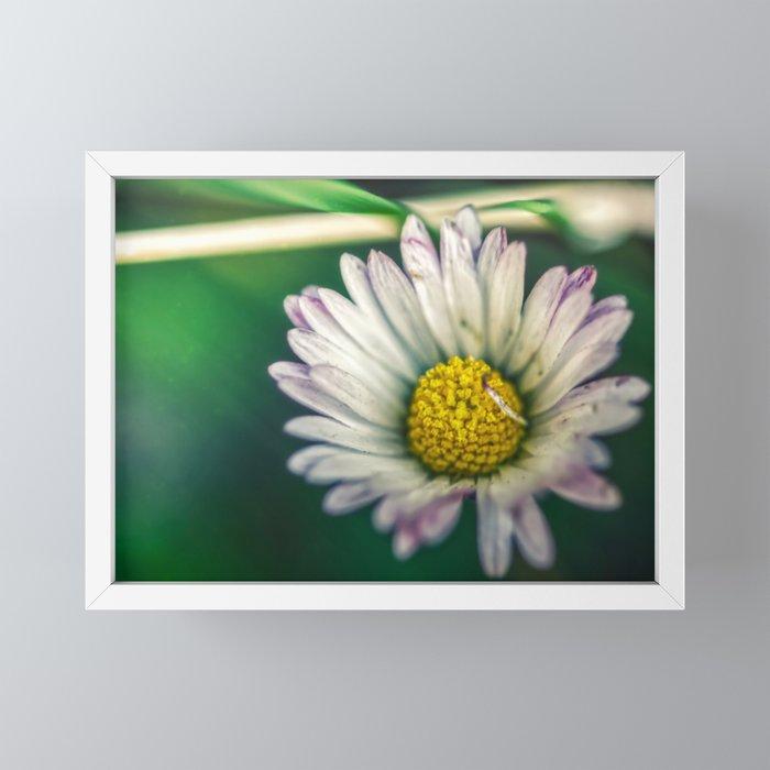 The rough of nature Framed Mini Art Print