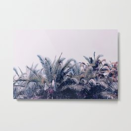 Palmistry Metal Print