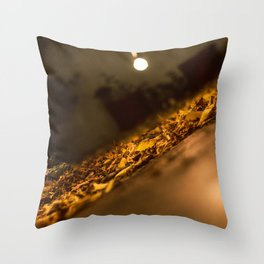 2017-10-15 Throw Pillow