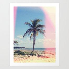 Palm Tree Light Leak Color Nature Photography Art Print