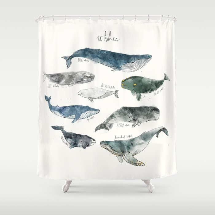 Whales Shower Curtain By Amyhamilton