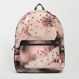 Sweet Spring (White Cherry Blossom) Backpack