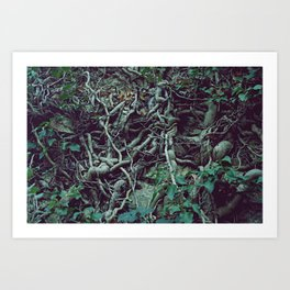 Very much tangled and scary Art Print