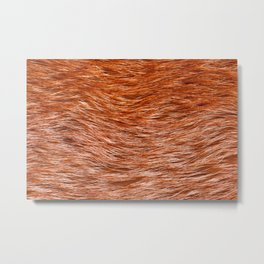 Red fox fur pelt texture cloth abstract Metal Print