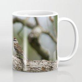 Sparrow in Tree Coffee Mug