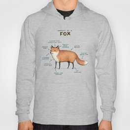 Anatomy of a Fox Hoody