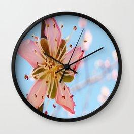 Spring Time Peach Tree Flower Wall Clock