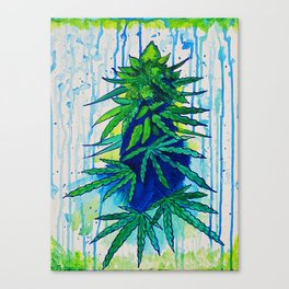 Rainy Day Kush Canvas Print