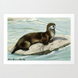 Fuertes, Louis Agassiz (1874-1927) - Burgess Animal Book for Children 1920 (Otter) Art Print